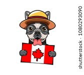 french bulldog. canadian flag.... | Shutterstock .eps vector #1080293090