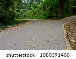 the forked road with fallen... | Shutterstock . vector #1080391400