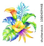 watercolor botanical... | Shutterstock . vector #1080409448