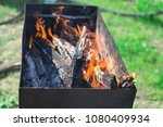 ignition of the grill | Shutterstock . vector #1080409934