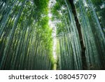 arashiyama bamboo groves in... | Shutterstock . vector #1080457079