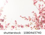 spring blossom with pink tree...   Shutterstock . vector #1080465740