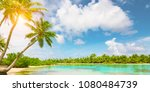 tranquil tropical island with... | Shutterstock . vector #1080484739