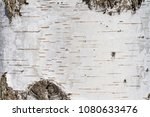 natural background   the... | Shutterstock . vector #1080633476