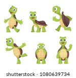 cartoon vector turtle in... | Shutterstock .eps vector #1080639734