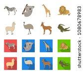 lama  ostrich emu  young... | Shutterstock .eps vector #1080678983