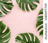 frame of tropical leaves... | Shutterstock . vector #1080697709