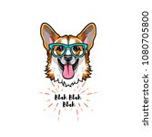 welsh corgi geek. smart glasses.... | Shutterstock .eps vector #1080705800