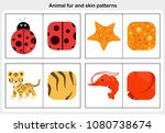 flashcards animal fur and skin... | Shutterstock .eps vector #1080738674