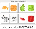flashcards animal fur and skin... | Shutterstock .eps vector #1080738683