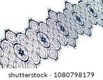 texture  background  pattern.... | Shutterstock . vector #1080798179