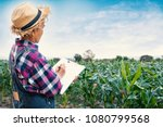 old gardener whiting report on... | Shutterstock . vector #1080799568