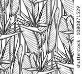 graphic strelitzia seamless... | Shutterstock .eps vector #1080871529