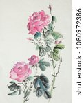 bouquet of pink roses on a... | Shutterstock . vector #1080972386