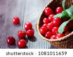 the red cherries of the summer... | Shutterstock . vector #1081011659