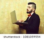 businessman with beard  stylish ... | Shutterstock . vector #1081059554