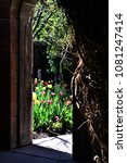 a secret garden is revealed...   Shutterstock . vector #1081247414