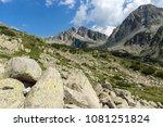 amazing landscape of... | Shutterstock . vector #1081251824