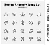 thin line icons set of human... | Shutterstock .eps vector #1081415156