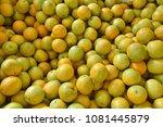 fruit wallpaper  pile of fruit   Shutterstock . vector #1081445879