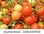 pile of vegetable   Shutterstock . vector #1081445930