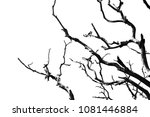 tree branches abstract... | Shutterstock . vector #1081446884