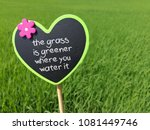 The Grass Is Greener Where You...