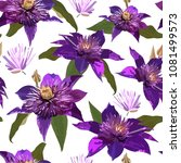 clematis purple flowers and... | Shutterstock .eps vector #1081499573