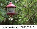 female northern cardinal... | Shutterstock . vector #1081505216