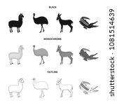 lama  ostrich emu  young... | Shutterstock .eps vector #1081514639