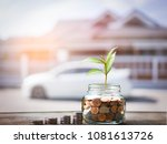 coins in jar plant growing in... | Shutterstock . vector #1081613726