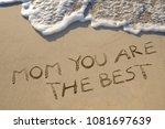 mother's day celebration | Shutterstock . vector #1081697639