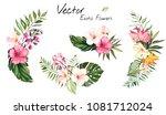 set tropical vector flowers.... | Shutterstock .eps vector #1081712024