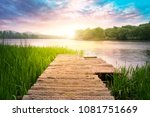 the beautiful chinese...   Shutterstock . vector #1081751669