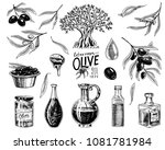 set of olive oil and branch of... | Shutterstock .eps vector #1081781984