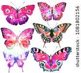 beautiful butterflies  set... | Shutterstock . vector #1081802156