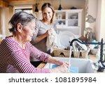 an elderly grandmother with an...   Shutterstock . vector #1081895984