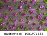 floral background with lilac... | Shutterstock . vector #1081971653