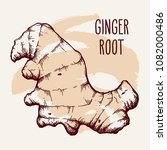 ginger root over brown brush... | Shutterstock .eps vector #1082000486