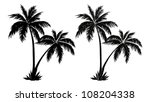 Tropical Palm Trees  Black...
