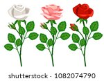 beautiful branches with roses... | Shutterstock .eps vector #1082074790