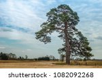 rustic landscape with a... | Shutterstock . vector #1082092268