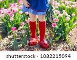 child in tulip flower field... | Shutterstock . vector #1082215094