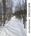 beautiful winter day in... | Shutterstock . vector #1082221898