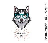 siberian husky geek. smart...   Shutterstock .eps vector #1082235014