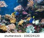 coral reef | Shutterstock . vector #108224120