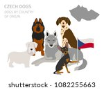 dogs by country of origin.... | Shutterstock .eps vector #1082255663