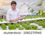 farmer  owner hydroponics... | Shutterstock . vector #1082270960