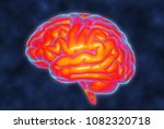 brain temperature mri... | Shutterstock . vector #1082320718