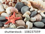 Red Starfish With Shells On Th...